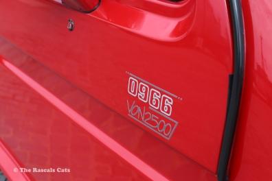 Mattias Red - 011